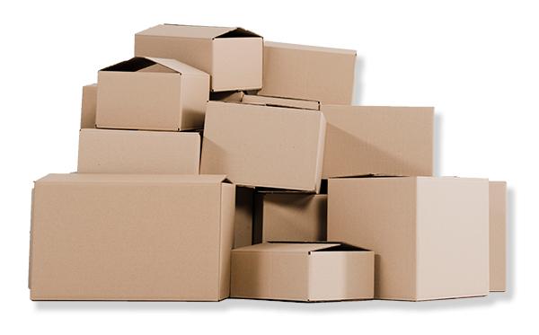 Kartonnen dozen Rovapack